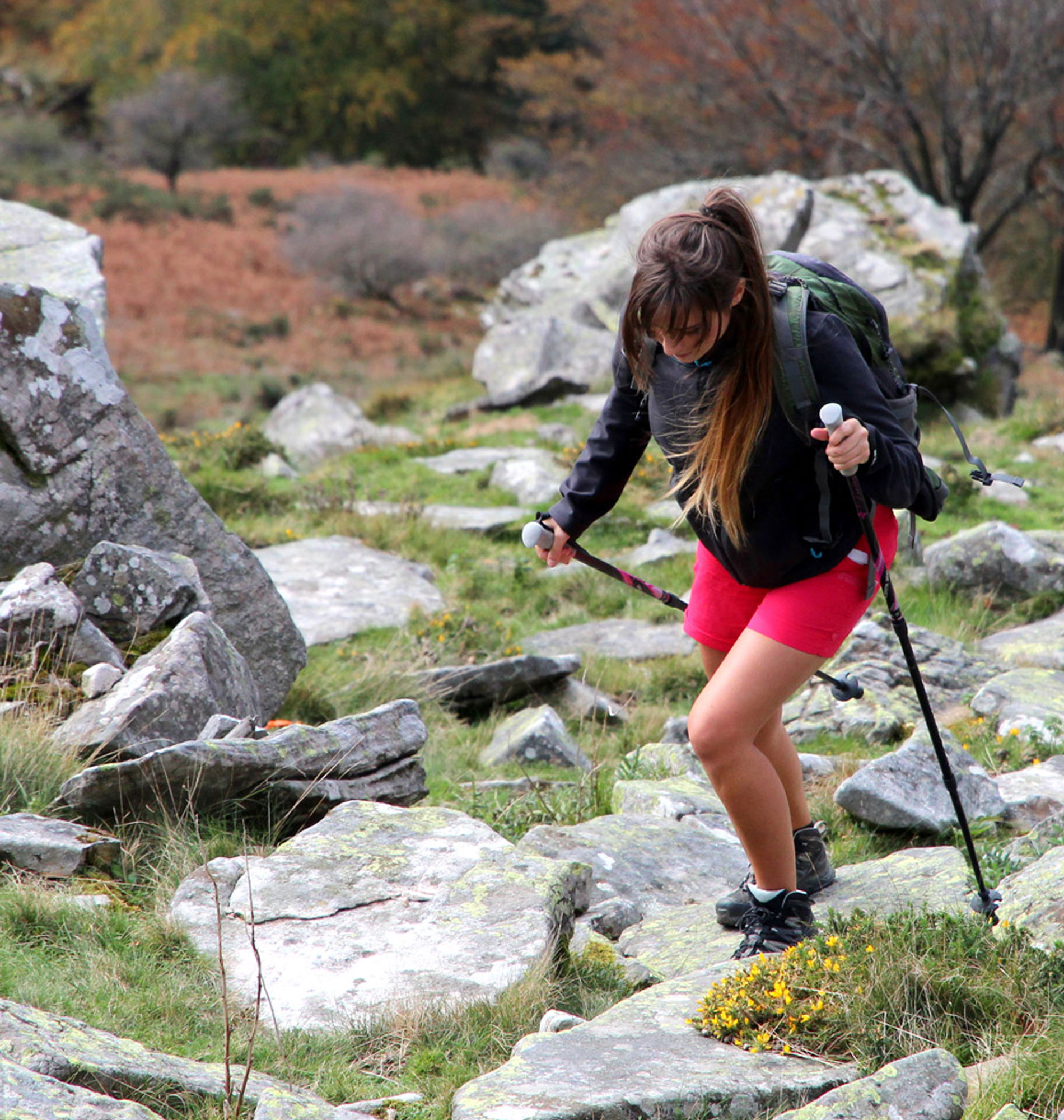 Trekking à la Rhune dans les Pyrénées avec Kiwi de l'Adour